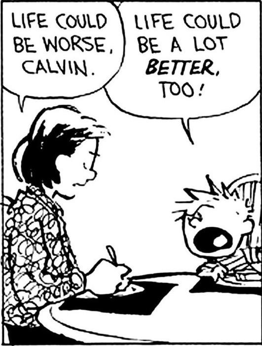 funny-calvin-life